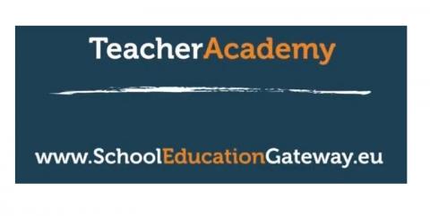 teacher academy